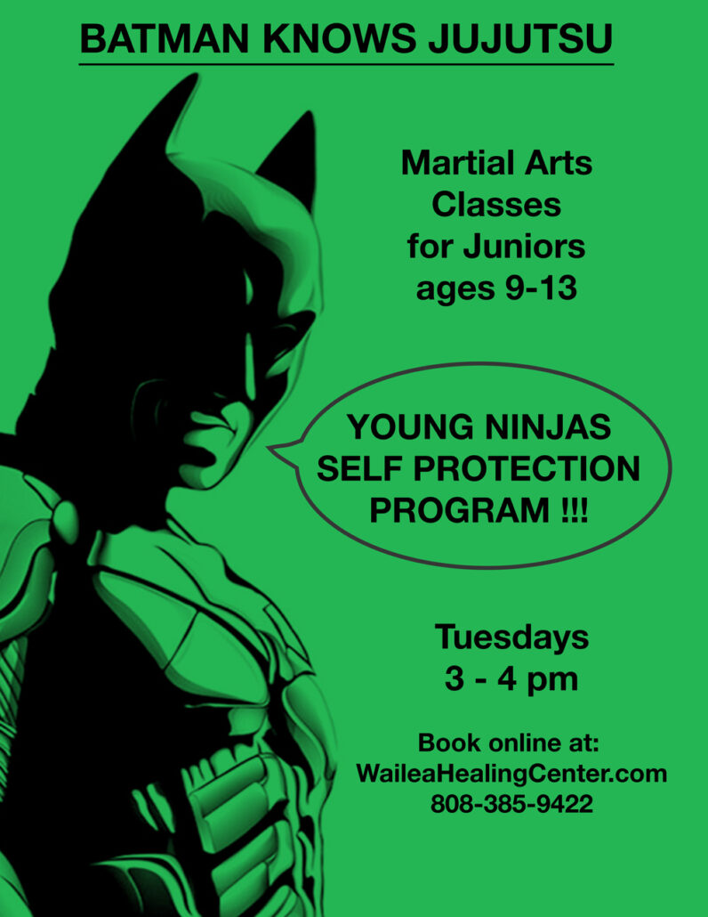 maui martial arts for kids
